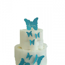 Gâteau de Couche pour garçon «envolé de papillon»