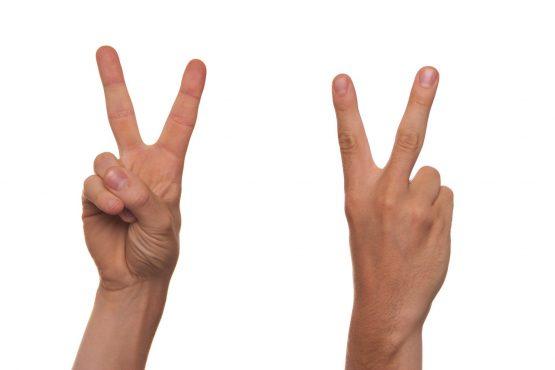 Formation langue des signes pour les bébés